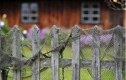 Līdz 26.oktobrim var pieteikties rūpnieciskās zvejas tiesību nomai piekrastē Jūrmalas pilsētas teritorijā