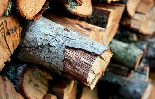 Daļa mežu joprojām ir sausa, ugunsbīstamība saglabājas
