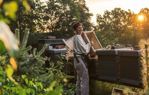 """Edgars un Liena Mucenieki – mākslinieki, bioloģiskie saimnieki, biškopji un """"Lienas Medus"""""""