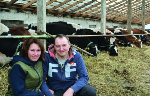 Lielbērtulaišos govis slauc robots
