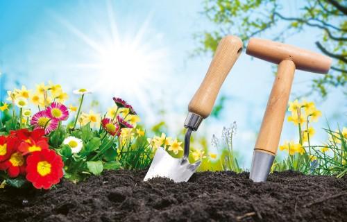 Ziemas miers gājis secen. Ko tas nozīmē dārzkopim?