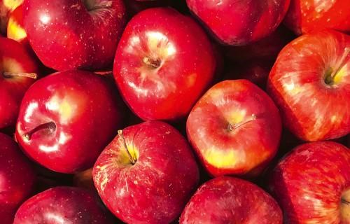 LATVIJAS āboli visai ziemai