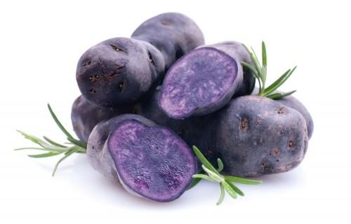 Krāsaino kartupeļu audzēšanas sasniegumi Latvijā