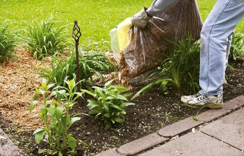 Skaists dārzs, nekaitējot mugurai!