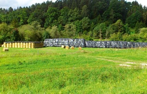 Kā ar minimāliem zudumiem saglabāt sienu un salmus āra apstākļos